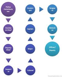 Law Enforcement Hierarchy Chart American Police Hierarchy Police In Hierarchy Structure