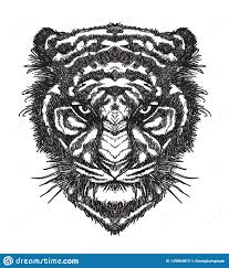 Tattoo Art Tiger Hand Drawing And Sketch Black And White Stock