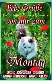 Montag Sprüche Gif Bilder Und Sprüche Für Whatsapp Und Facebook