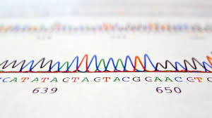 Ancestry Dna Test Comparison Chart A Man Says His Dna Test Proves Hes Black Hes Suing The
