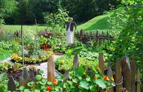 vegetables garden fence ideas for protection. Beautiful Backyard Vegetable Garden Housebined With Various Flower Plants And Diy Wooden Fence Ideas Patio Planner Vegetables For Protection