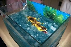 fishtank furniture. Fish Tank In Bedroom Furniture Wall Fishtank