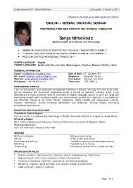 Experienced Resume Sample Resume Examples For Professional Experience New Resume Sample Format 5