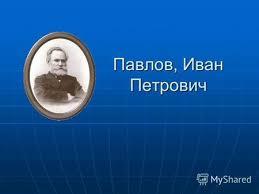 Презентация на тему Павлов Иван Петрович Материал из Википедии  Иван Петрович Павлов