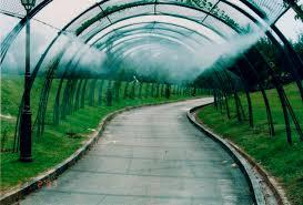 Image result for hệ thống phun sương