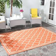 2x5 rug 2 x 5 rug for home goods rugs pink rug