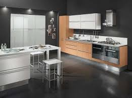 Modern Black Kitchen Cabinets Modern Dark Tile Floor Kitchen The Two Types Of Kitchen Cabinets