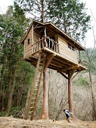 tree house plans for two trees. Modren Trees An Amazing Two Tree Treehouse With Rustic Ship Lap Siding Inside House Plans For Trees E