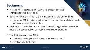 Guidelines On The Use Of Sbr For Business Demography And