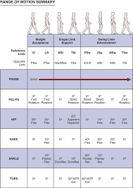 Assessment Of Gait Clinical Gate