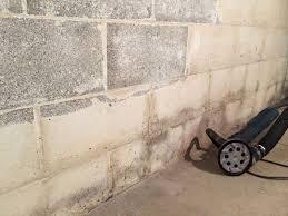 moldy basement wall hilliard oh before
