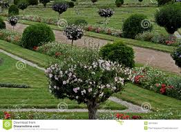 A Study Of A Formal Garden With Plants And Flowers Stock Photo