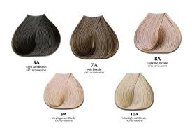 Loreal Ash Color Chart Ash Hair Color Chart Will Ash Hair Color Offset Orange