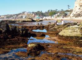 70 Accurate Crystal Cove Tide Pool Chart
