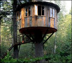 Treehouse Masters  Pete Nelson NEW  YouTubePete Nelson Treehouse Man