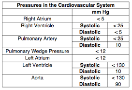 Chamber Pressure Chart Normal Pressures Cardiovascular Medbullets Step 1