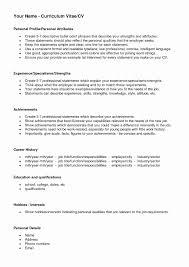 Strong Resume Headline Examples Lovely Best Resume Profile