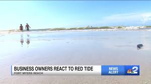 High Concentrations Of Red Tide Showing In Southwest Florida
