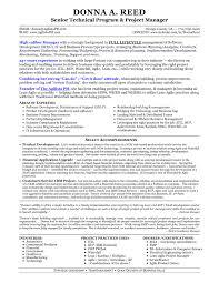 Elegant Technical Project Manager Resume Resume Format Web