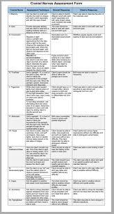 Sample Nursing Assessment Form 24 Best Nursing Assessment Images On Pinterest School Health And 17