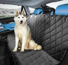 we all know how much dogs love to go for car rides the only trouble is they can put a lot of extra wear and tear on your vehicle
