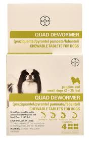 Dog Worm Identification Chart Bayer Quad Dewormer Chewable Tablets For Dogs Jeffers Pet