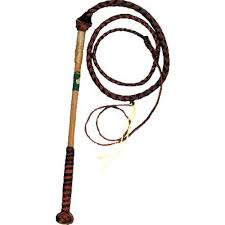 Nemeth Childrens Redhide Whip with Youth Handle
