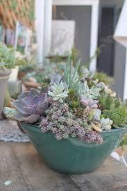 Succulent Pot Design Containers For Succulents Best Ideas About Succulent Pots