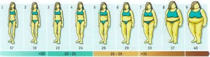 Bmi Chart For Women Calculate Your Body Mass Index With