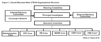 Committee Organization Chart Mw Ctr In Organizational Structure Ctrin