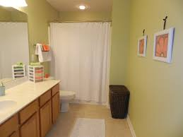 Image of: Bathroom Ideas For Boys And Girls