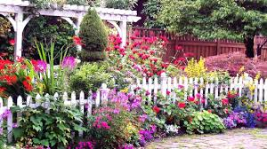backyard gardening. DIT: Unique Backyard Gardening Ideas
