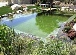 best of how to make a diy natural swimming pool 9