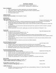 Resumes For Free Elegant Easy Resume Examples New Simple Resume