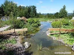 landscape bridge backyard pond bridge build waterfall bridge diy wood bridge