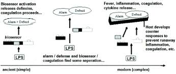 Ancient and Modern Endotoxin Biosensors: Evolutionary Perspectives Inform  LAL Technologies | American Pharmaceutical Review - The Review of American  Pharmaceutical Business & Technology