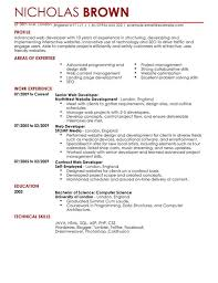 Resume Examples Amazing Web Developer Resume Template Free Examples