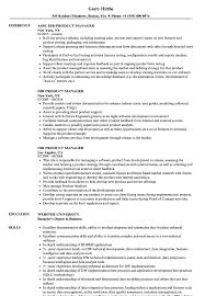Product Manager Resume Examples Senior Executive Resume Samples