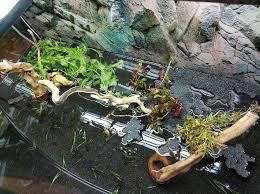 Как собрать и оформить <b>180</b> литровый <b>аквариум</b> с растениями ...