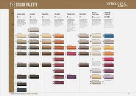74 Systematic Next Generation Hair Colour Chart