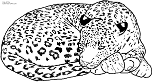Pictures Of Leopard Coloring Pages