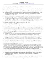 Pmo Resume Samples Best of Sample Resume Pmo Analyst Danayaus