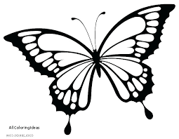 Butterfly Coloring Pictures Detailed Butterfly Coloring Pages For
