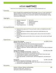 General Insurance Sales Cv Sample Curriculum Vitae Cv