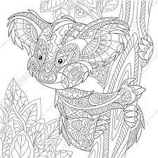 koala bear coloring page zentangle by coloringpageexpress