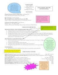Sample Functional Resume Essayscope Com