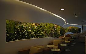 office feature wall. Corporate Vertical Gardens Office Feature Wall