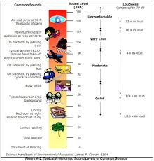 decibel level charts decibel comparison chart chart2 paketsusudomba co