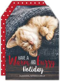 cheap holiday cards. Interesting Holiday Holiday Cards With Cheap S