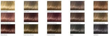 clairol professional hair color photo 4